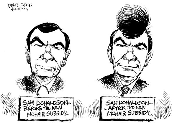 Daryl Cagle - MSNBC.com - Donaldson Mohair Subsidy - English - Sam Donaldson, Mohair Subsidy, hair, anchor, news, ABC
