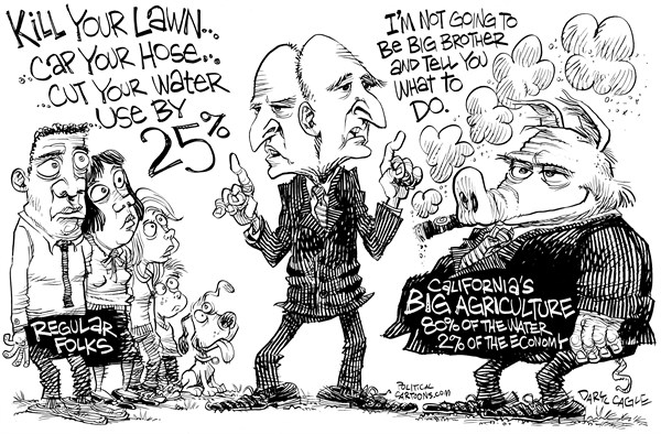 Two Faced Jerry Brown © Daryl Cagle,CagleCartoons.com,California,water,drought,environment,global warming,agriculture,farm,farmers,farming,pig,restrictions,cities,hose,lawn,climate change
