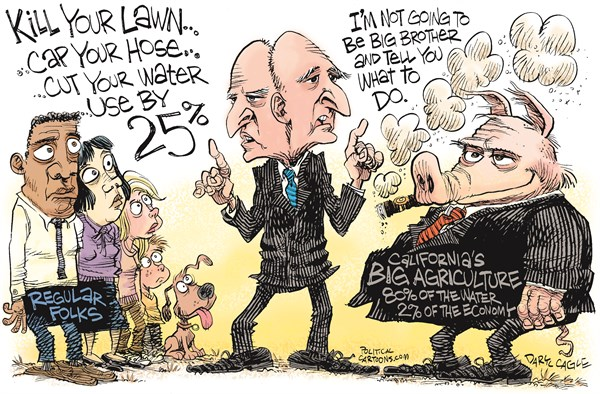 Two Faced Jerry Brown © Daryl Cagle,CagleCartoons.com,California, water, drought, environment, global warming, agriculture, farm, farmers, farming, pig, restrictions, cities, hose, lawn, climate change
