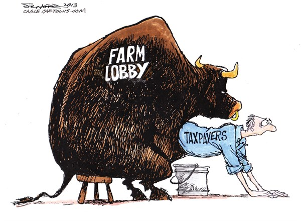 Bill Schorr - Cagle Cartoons - Farm Lobby - English - farm lobby,taxpayers
