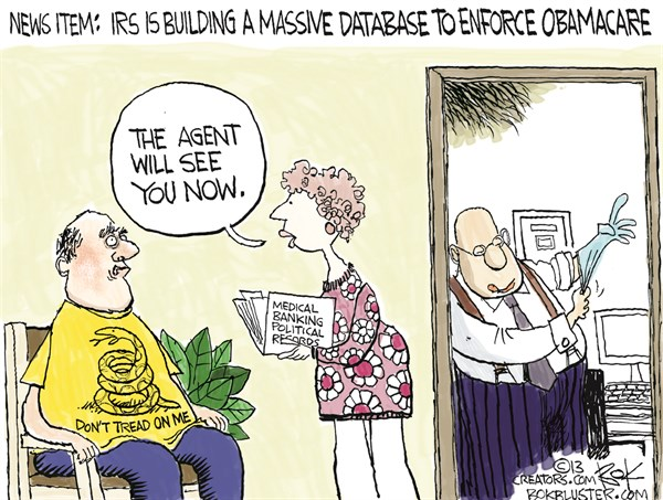 131937 600 IRS Database cartoons