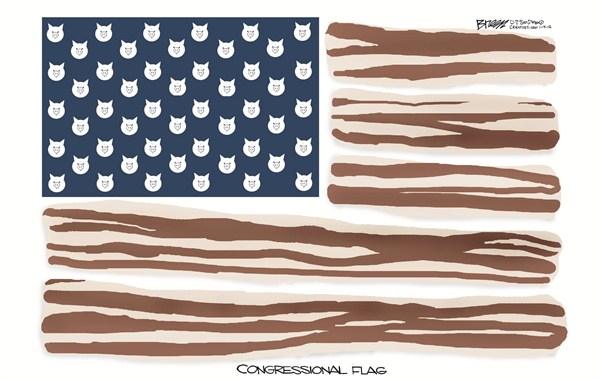 125063 600 Congressional Flag cartoons