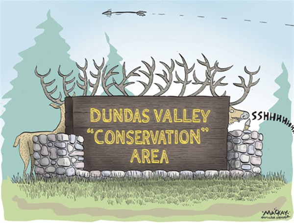 101101 600 Conservation Area cartoons