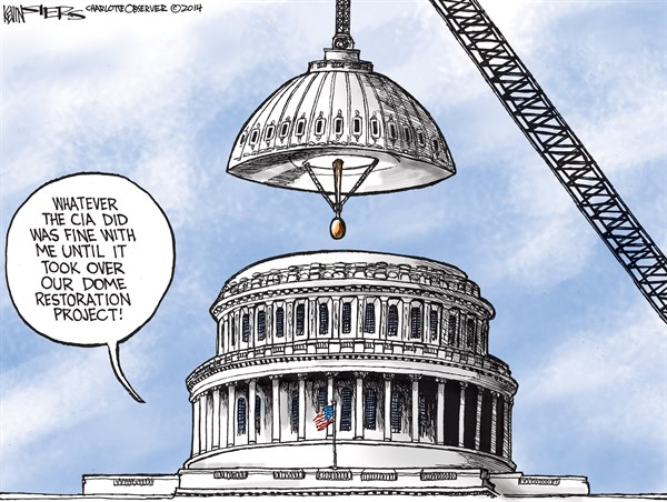 Dome Restoration Project © Kevin Siers,The Charlotte Observer,dome,project,restoration,cia