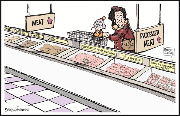 Meat Choices © Martyn Turner,The Irish Times, Dublin,meat,processed,food