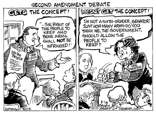 129155 600 Second Amendment Debate cartoons