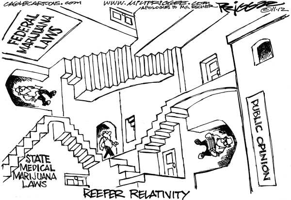 Reefer Relativity © Milt Priggee,Puget Sound Business Journal,marijuana,  state, federal, laws, medical, public opinion