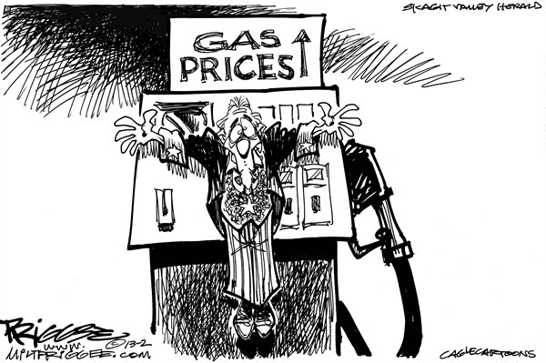 Milt Priggee - www.miltpriggee.com - Gas Prices - English - gas, prices, america