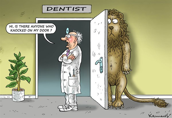 AFRICAN LION AND THE AMERICAN DENTIST © Marian Kemensky,Slovakia,lion,dentist,africa