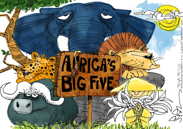 Jeremy Nell - The New Age, South Africa - Africas Big Five - English - Africa, elephant, lion, leopard, bull,