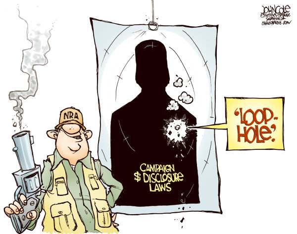 NRA LoopHole COLOR © John Cole,The Scranton Times-Tribune,nra, guns, gun control, campaign finance, 2010 election