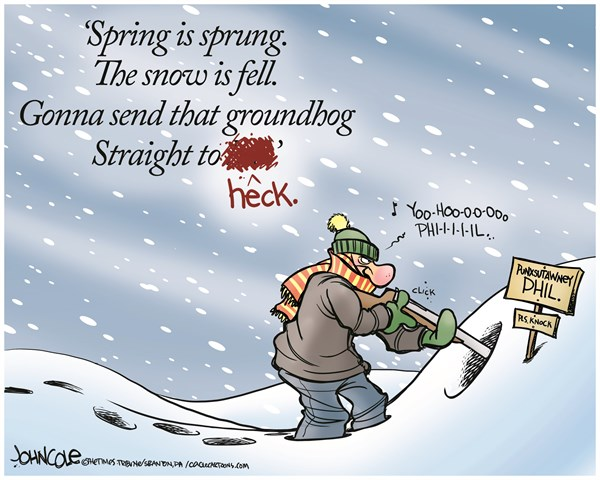 John Cole - The Scranton Times-Tribune - Get the groundhog COLOR - English - groundhog day, weather, winter, climate