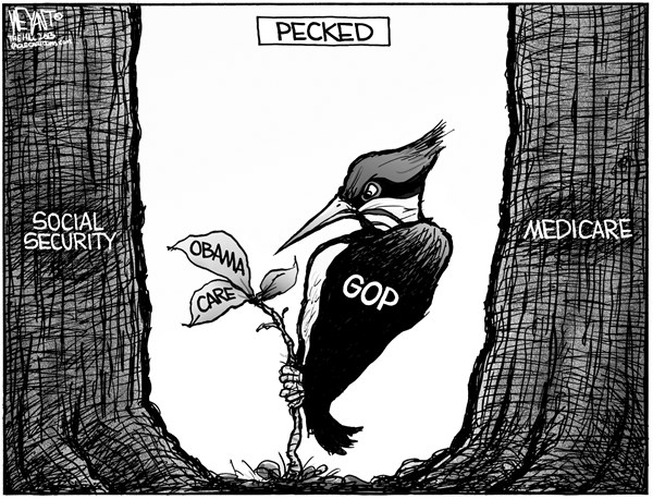 Christopher Weyant - The Hill - Pecked - English - Obamacare, healthcare, GOP, Republicans, Congress, woodpecker, medicare, social security