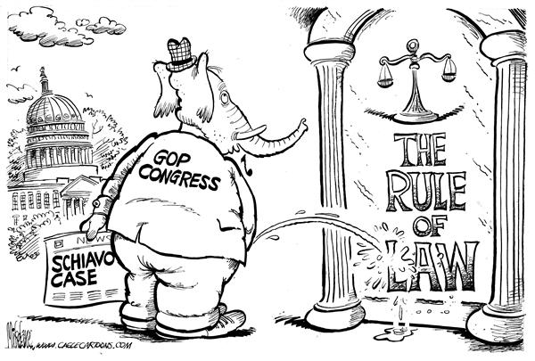14218 600 GOPee on The Rule of Law cartoons