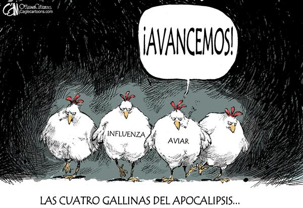 Cardow - The Ottawa Citizen - Avancemos / COLOR - Spanish - Influenza, Gripe, aviar, aviaria, aves, gallina, pollo, Apocalipsis, enfermedad, pandemia, epidemia