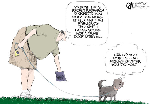 67703 600 2013 Resolution: Be A Responsible Pet Owner cartoons