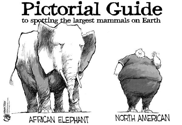 Cardow - The Ottawa Citizen - Large Mammals - English - North, America, diet, fat, obesity, weight, health