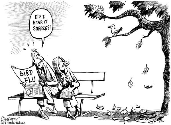 20674 600 BIRD FLU cartoons