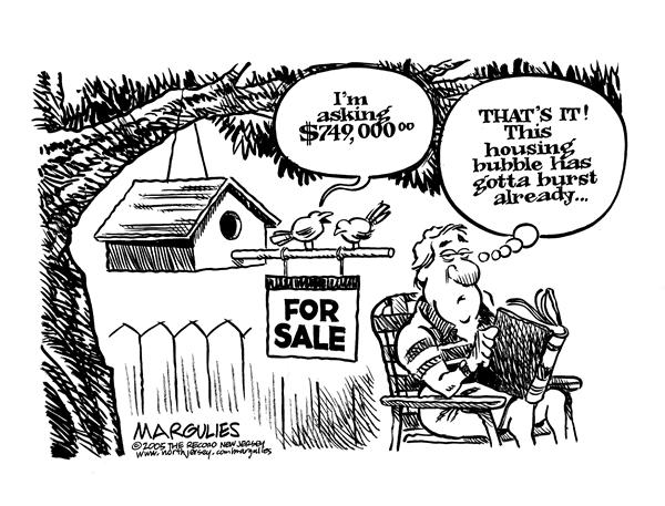 Jimmy Margulies - The Record of Hackensack, NJ - Housing Price Bubble - English - Housing, Prices, Real Estate, Home, Price Bubble, prices, price, homes, houses, expensive, birdhouse, birds, burst, money