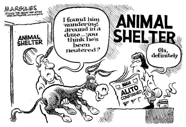Jimmy Margulies - The Record of Hackensack, NJ - Alito Confirmed - English - Alito, Supreme, Court, courts, Democratic Party, dems, democrat, democratic, donkey, ass, appointment, judge, justice, animal shelter, spay, neuter, neutered, fixed, congress