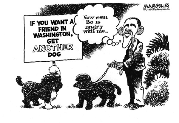 Jimmy Margulies - The Record of Hackensack, NJ - Obama dogs Bo and Sunny - English - Obama dogs, Bo, Sunny, presidential pets