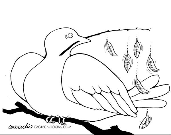 Arcadio Esquivel - La Prensa, Panama, www.caglecartoons.com - Withering Peace - English - dove, peace, iraq, war
