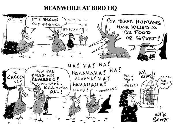 Nik Scott - Australia - Meanwhile at Bird HQ - English - bird flu pandemic