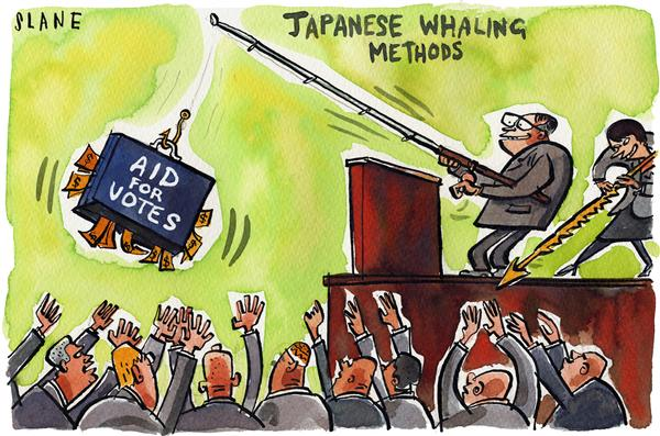 Chris Slane - New Zealand - Japanese Whale Bait - English - japan whaling conference bribes conservation
