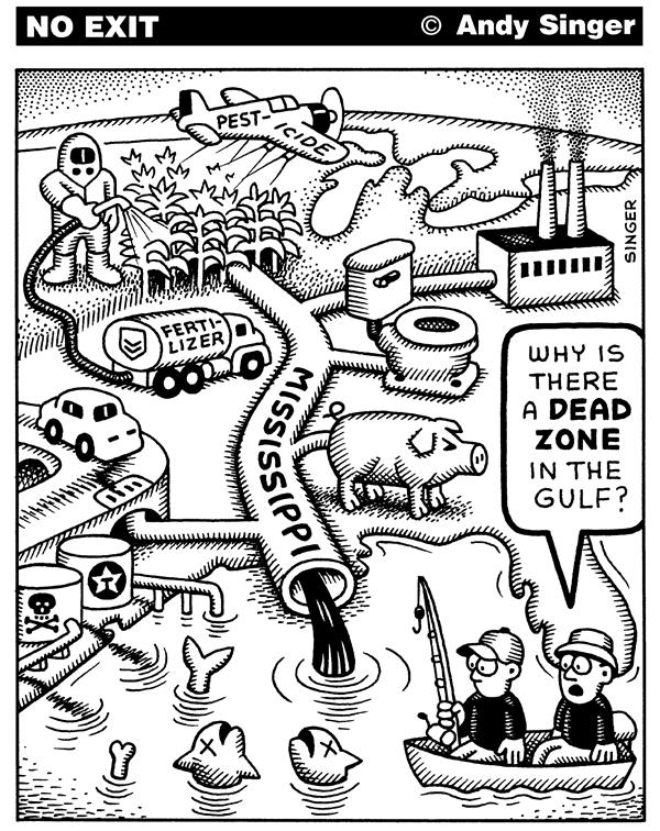 Andy Singer - Politicalcartoons.com - Waste in Mississippi River ends up in Gulf - English - environment, environmental, environmentalism, river,  rivers, mississippi, hog, hogs, livestock, waste, pesticides, deadzones, pollution, pollute, polluted, red tide, tides, fish, gulf, water, waters, ocean, fishing