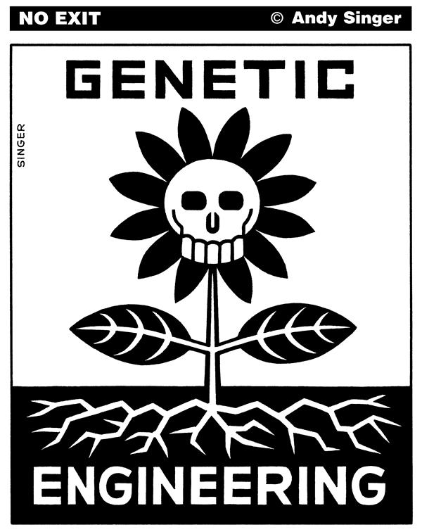 Andy Singer - Politicalcartoons.com - Genetic Engineering Logo - English - genetic,engineer,engineering,genetically,modified,food,foods,agriculture,agribusiness,farms,farming,genetics,ge,GE,corn,soybeans,rice,seed,seeds,Monsanto,monsanto,drift,environment,environmental,contamination