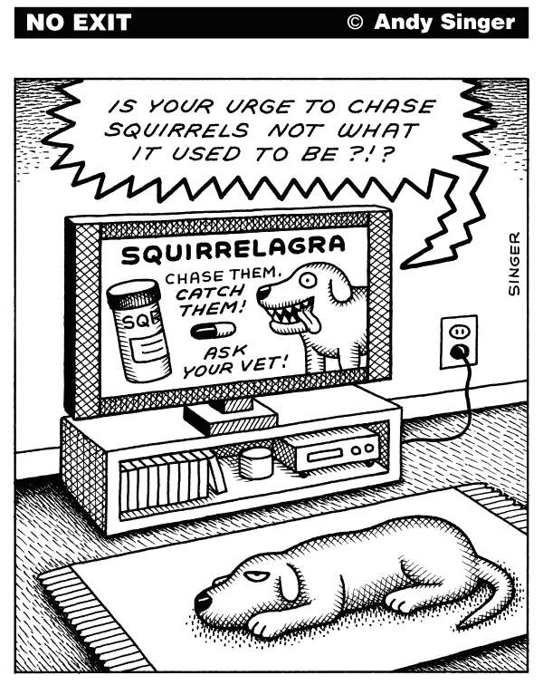 Andy Singer - Politicalcartoons.com - Squirrelagra - English - squirrel,squirrels,rodent,rodents,dog,dogs,canine,canines,pet,pets,animal,animals,chase,chases,chasing,vet,vets,drug,drugs,sex,sexual,pharmaceutical,pharmaceuticals,ad,ads,advertise,advertisement,advertisements,television,televisions,commercials