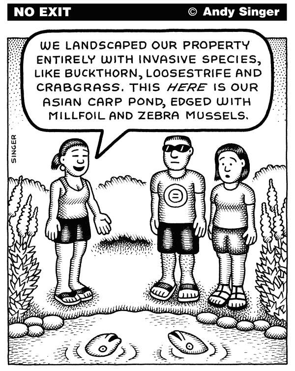 113864 600 Invasive Gardening cartoons