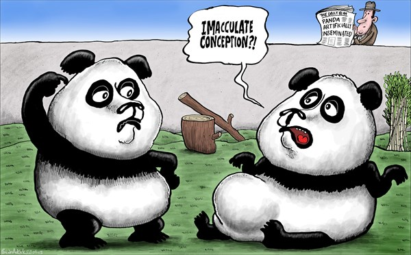 130810 600 Edinburgh Pandas Artificially Inseminated cartoons