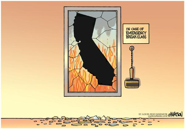 43169 600 California Wildfires cartoons