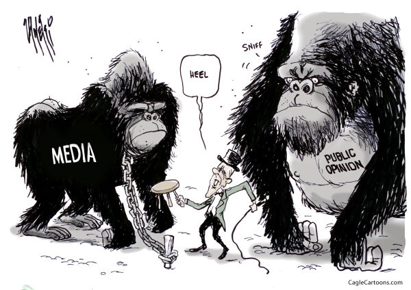 Paul Zanetti - Australia - Media vs. Public Opinion - English - public, opinion, media, gorillas