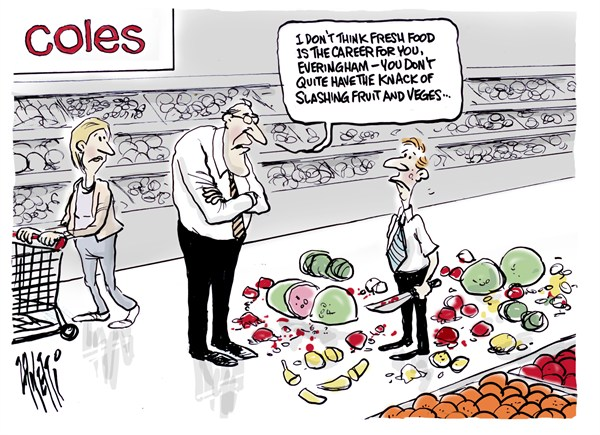 105460 600 Fresh Food cartoons