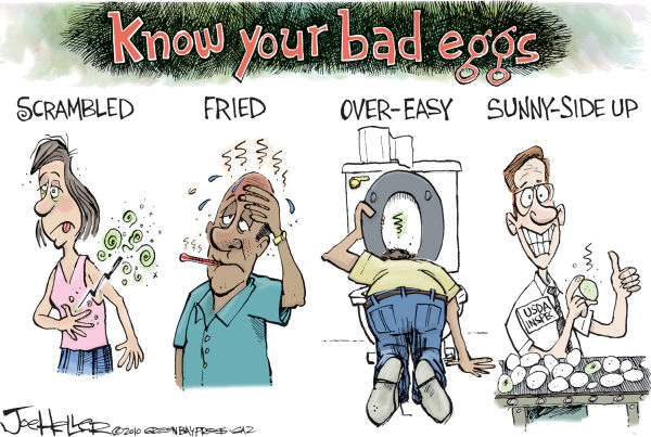82194 600 Bad Eggs cartoons