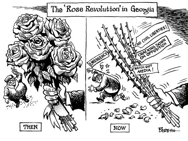 Paresh Nath - The National Herald, India - Rose revolution in Georgia - English - Georgia,rose revolution,democracy,emergency,press muzzling,crackdown on opposition,thorns,stick
