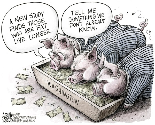 125021 600 Washington Pork Projects cartoons