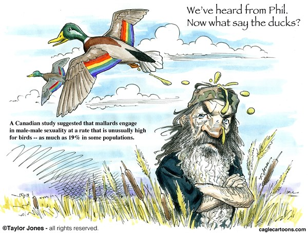 Taylor Jones - Politicalcartoons.com - What say the ducks - COLOR - English - duck,dynasty,phil,robertson,homosexuality,gays,homophobia,sin,mallard,birds,reality,TV,natural,selection,hunting