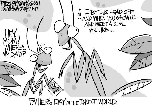 94110 600 fathers day in the insect world cartoons