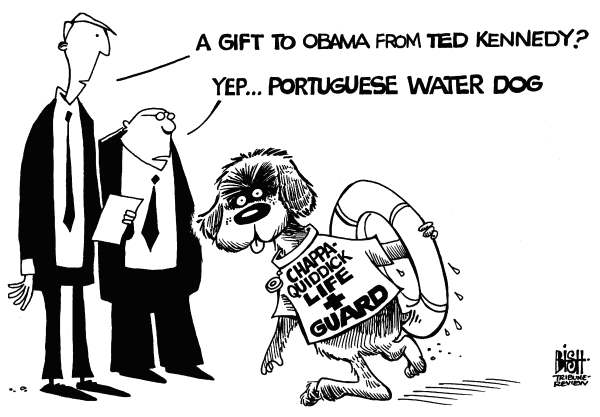 Randy Bish - Pittsburgh Tribune-Review - A DOG FROM TED, b/w - English - DOG,BO,OBAMA,KENNEDY,WATER DOG