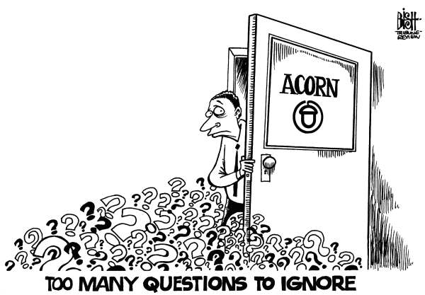 Randy Bish - Pittsburgh Tribune-Review - ACORN QUESTIONS, b/w - English - ACORN,CORRUPTION