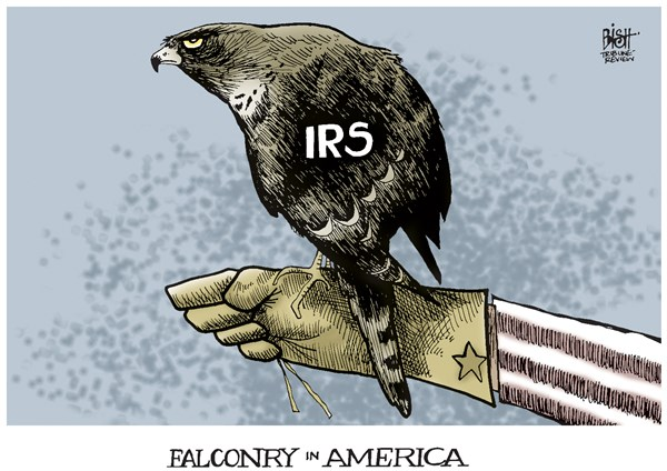 Randy Bish - Pittsburgh Tribune-Review - IRS, COLOR - English - IRS, TAX, TAXES, INTERNAL REVENUE SERVICE, CONSERVATIVE, OBAMA