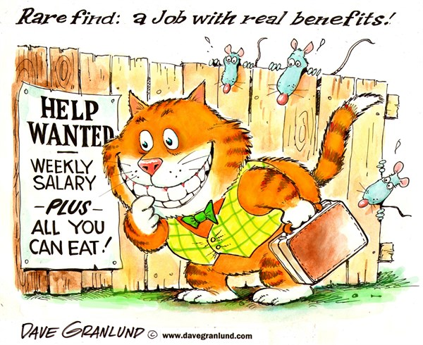 Jobs and benefits © Dave Granlund,Politicalcartoons.com,		Jobs,workers,fewer hours,pay salary,job benefits,extras,perks,less pay,job seekers,health,IRA,promotions,raises,raise,cost of living,positions, employers, employee benefits, employees