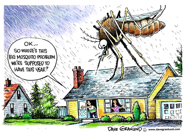 148957 600 Bad year for mosquitoes cartoons