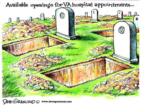 150159 600 VA hospital appointments cartoons